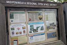 Purisima Creek Redwoods Open Space Preserve, Woodside, United States