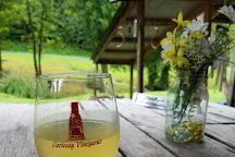 Cartecay Vineyards, Ellijay, United States