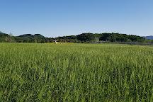 Iron Triangle Battlefield, Cheorwon-gun, South Korea