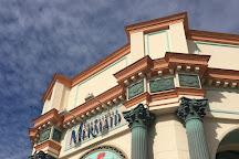 The Little Mermaid - Ariel's Undersea Adventure, Anaheim, United States
