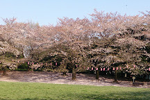 Warabi City Park, Warabi, Japan