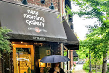 New Morning Gallery, Asheville, United States