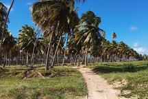 Lages Beach, Porto de Pedras, Brazil