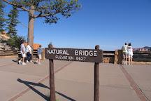 Natural Bridge, Bryce, United States