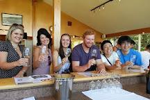 Grape Friends Lounge & Tours Inc., Penticton, Canada