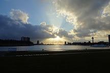 Kop van Zuid, Rotterdam, The Netherlands