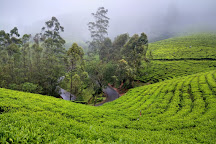 Photo Point, Munnar, India