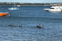 Matilda Bay Reserve, Crawley, Australia