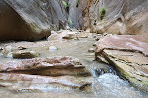 The Narrows, Zion National Park, United States