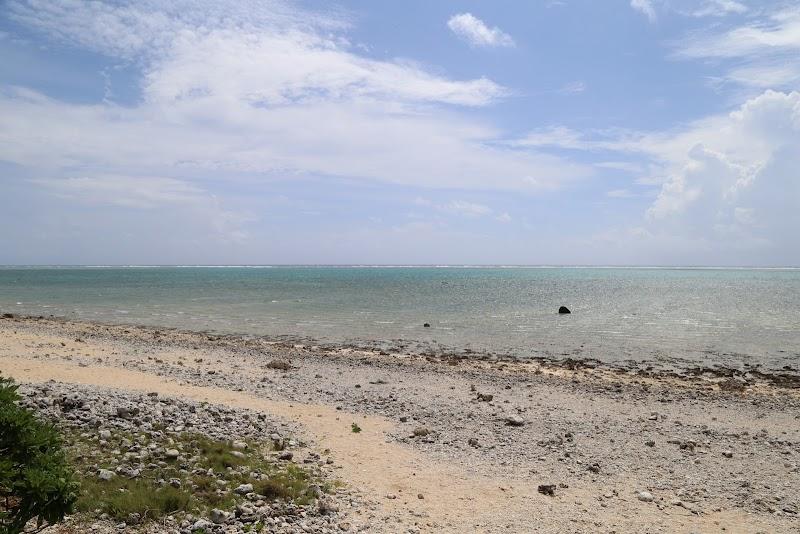 白保サンゴ村