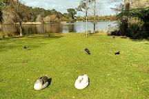 Wanganui Winter Garden, Whanganui, New Zealand
