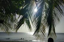 Tropicasub Plongee, Le Carbet, Martinique
