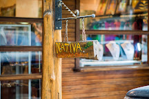 Nativa Gallery, Nosara, Costa Rica