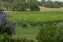 Flat Creek Estate Winery, Marble Falls, United States