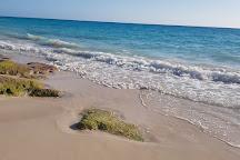 West Whale Bay Beach, Southampton Parish, Bermuda