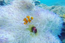 Aquatica, Cairns, Australia