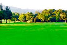 Randpark Golf Club, Johannesburg, South Africa
