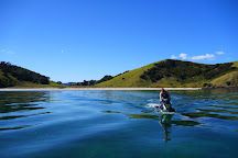 Tango Jet Ski Tours, Paihia, New Zealand