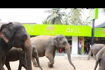 Luv SL, Pinnawala, Sri Lanka