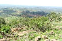 Ol Jogi Wildlife Conservancy, Nanyuki Town, Kenya
