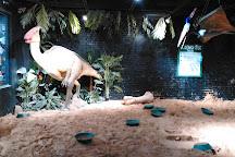 Dino Dig, Murfreesboro, United States