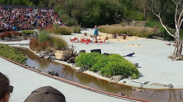 Parc Aux Oiseaux