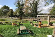 Deen City Farm, London, United Kingdom