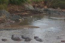 Retima Hippo Pool, Serengeti National Park, Tanzania