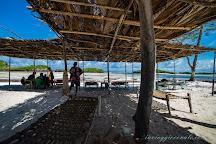 Isola dell'Amore, Watamu, Kenya