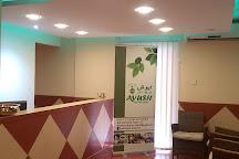 Ayush Ayurveda Center, Fujairah, United Arab Emirates