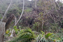 Wavine Cyrique Falls, Dominica
