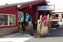 Fishetarian Fish Market, Bodega Bay, United States