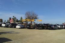 YesterLand Farm, Canton, United States