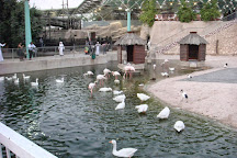Doha Zoo, Doha, Qatar
