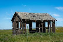 Carrizo Plain National Monument, Maricopa, United States