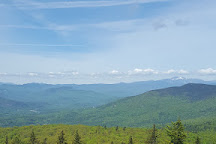 Black Cap Hiking Trail, North Conway, United States
