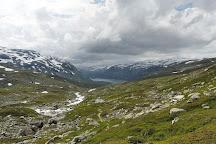 Hardangervidda National Park, Uvdal, Norway