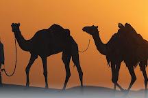 ABC Tours Dubai, Dubai, United Arab Emirates