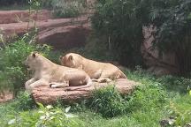 Parc national du Mali, Bamako, Bamako, Mali