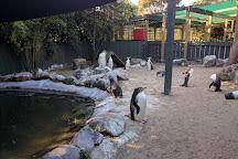 Penguin Place, Dunedin, New Zealand