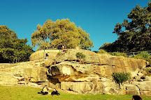 Blues Point Reserve, McMahons Point, Australia