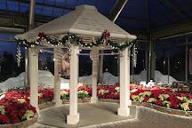 Garfield Park Conservatory & Sunken Garden, Indianapolis, United States
