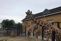 Fukuyama City Zoo, Fukuyama, Japan