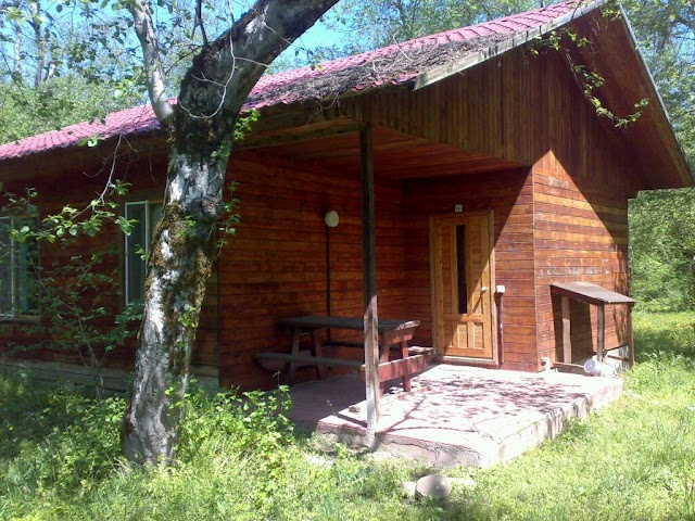 Long Forest Cabins