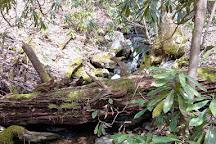 Emery Creek Trail, Chatsworth, United States