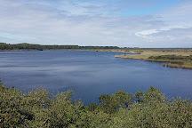 Reserve Naturelle de l'Etang de Cousseau, Lacanau-Ocean, France