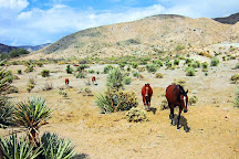 Crazy Horse Ranch, Morongo Valley, United States
