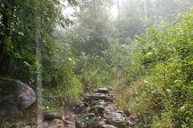 Kumara Parvatha, Somvarpet, India