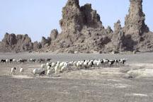 Lac Abbe, Djibouti, Djibouti