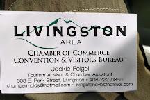 Livingston Area Chamber of Commerce, Livingston, United States